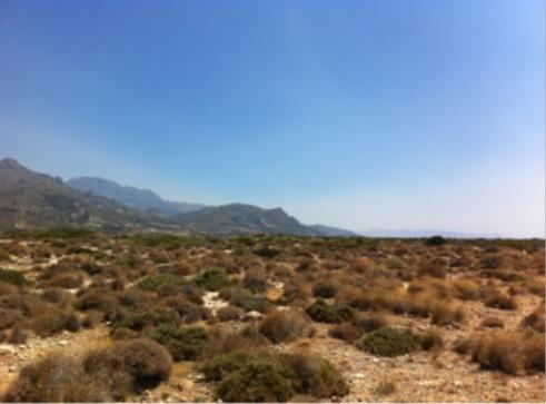 Ierapetra Project - 4