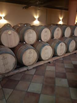Winery-10