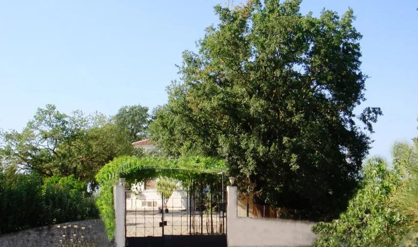 Villa in Varda-6