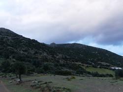 Land in Crete-25