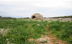 Agios Thomas Island - 9