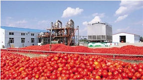 Agricultural Product Processing Plant.jp