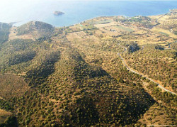 Land in Peloponese-8