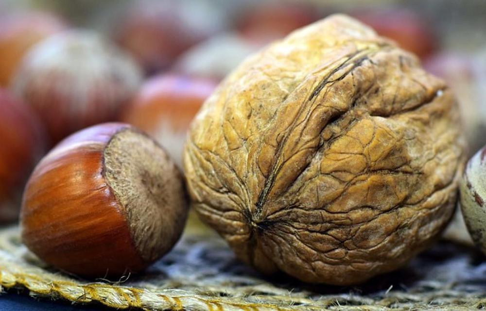 Les nutriments et minéaux essentiels de la noisette.