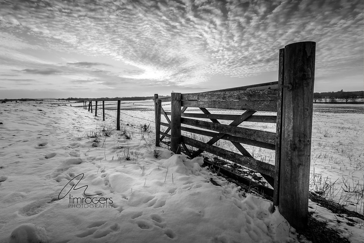 Open gate at Bawsey.jpg