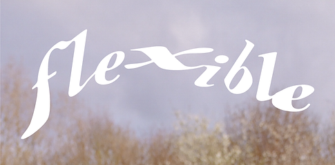 flexible1.png