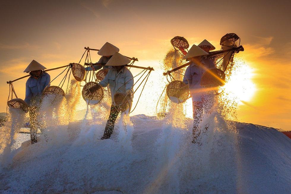 Salzgrotte Terrapol Salzabbau Vietnam