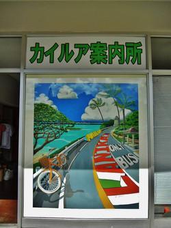Kailua Information