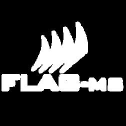 Flag-MS s.r.l.