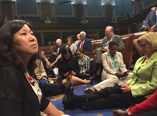 'No bill, no break!' Queens Democrats in the thick of the Congressional sit-in on Capitol Hill