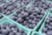 blueberries tite.jpg