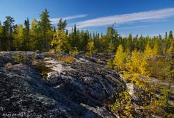 The Range Lake Trail