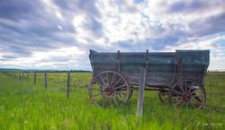 Springbank Wagon