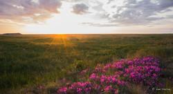 Paulatuk Sunset