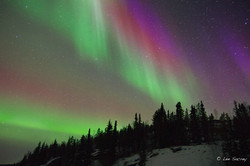 Aurora in Colour