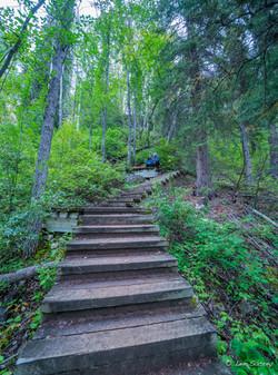 Louise Falls Staircase