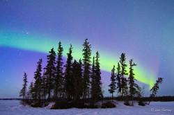 Breaking Aurora's Fall