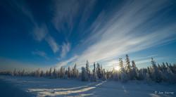 Winter Road Sunset