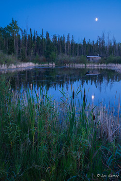 60th Parallel Pond