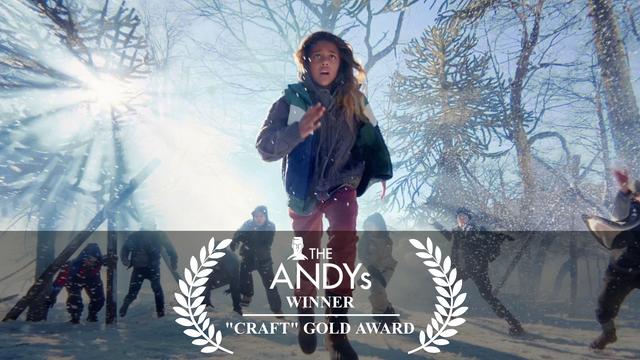 "'Snowbrawl' Wins ""Craft"" Gold Award"