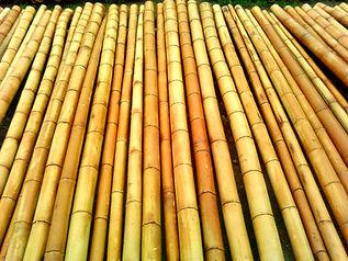 Бамбук. Ствол бамбука. Декор.