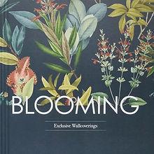 obloga_blooming_149.jpg