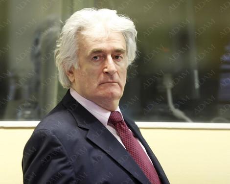 Караджич просит свободу