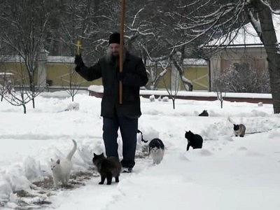 Кошачий крестный ход в монастыре