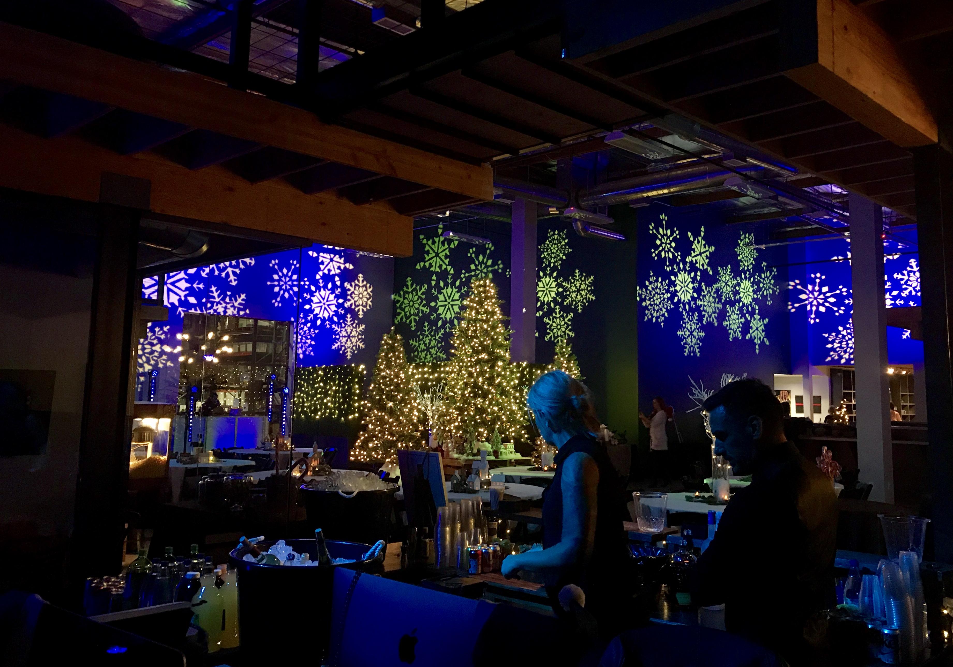 Holiday Event Lighting