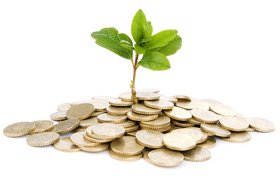 绿色投资 解决全球变暖