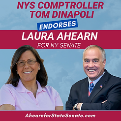 Comptroller DiNapoli Endorsement.png