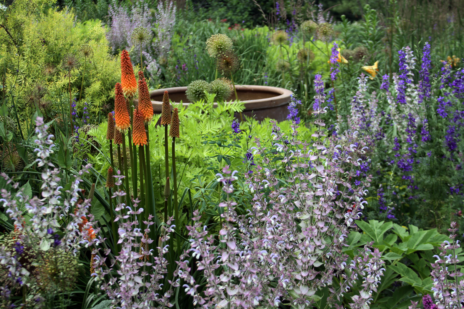 Perennial combo w Cleary sage, red hot p