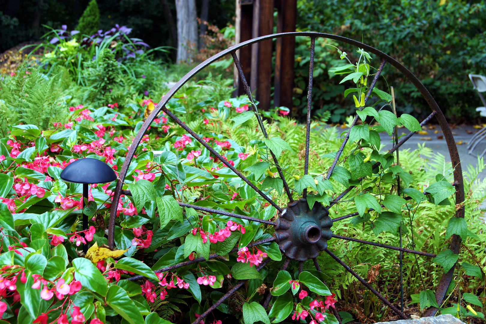 Boys Garden steel wheel and angel wing b