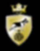 vvdh logo zonder achtergrond-01.png