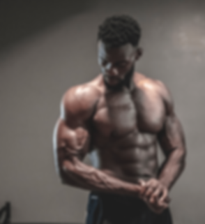 Fitness - Workout - Muscles Building