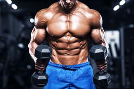 Muscles workout program