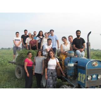 Cultural Excursion 1A.jpg