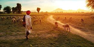 header_149146420473_Rural_Rajasthan_2000