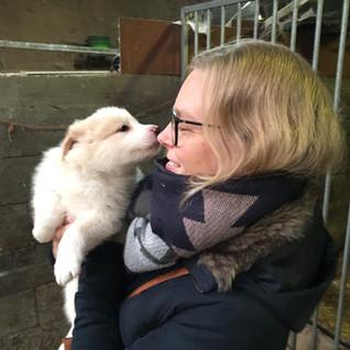 Hoe een puppy je voorbereidt op een baby - en ook weer niet