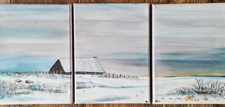 Aubrac-hiver.jpg