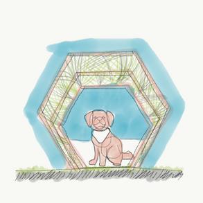 Dog's shelter