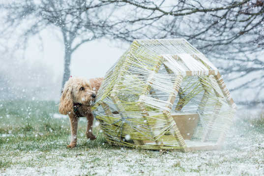 House for a dog - Green Nest