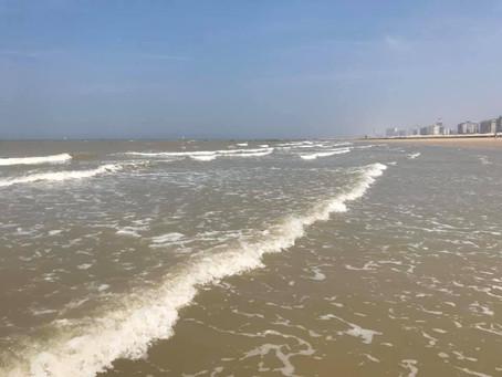 Belgia: Rezervare pentru șezlonguri la Blankenberge. Plajele libere sunt fără rezervare, dar cu limi