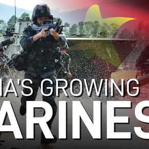 China's Marine Units & Capabilities