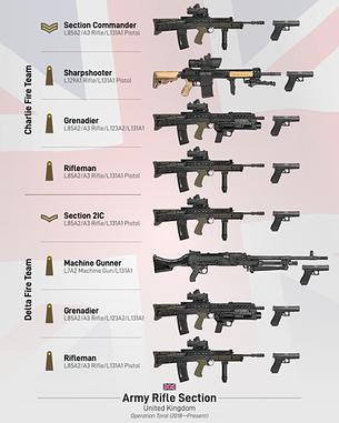 Modern British Rifle Section