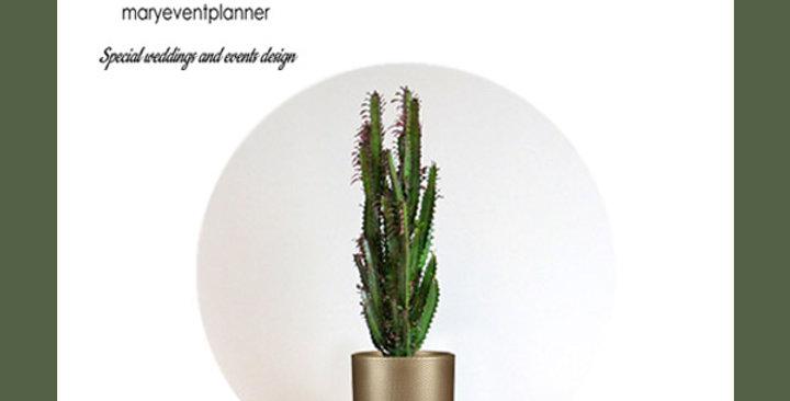 "CACTUS ""EUPHORBIA TRIGONA"" - Vaso di metallo formato SMALL"