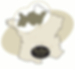 carte-lion-343a15d9.png