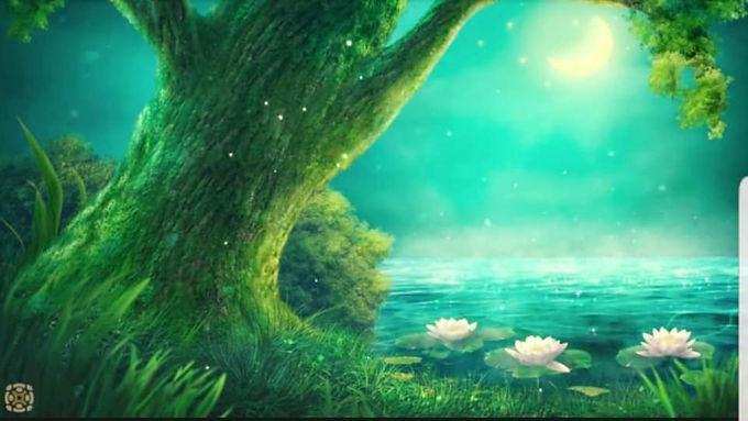 Sacred Healing Circle