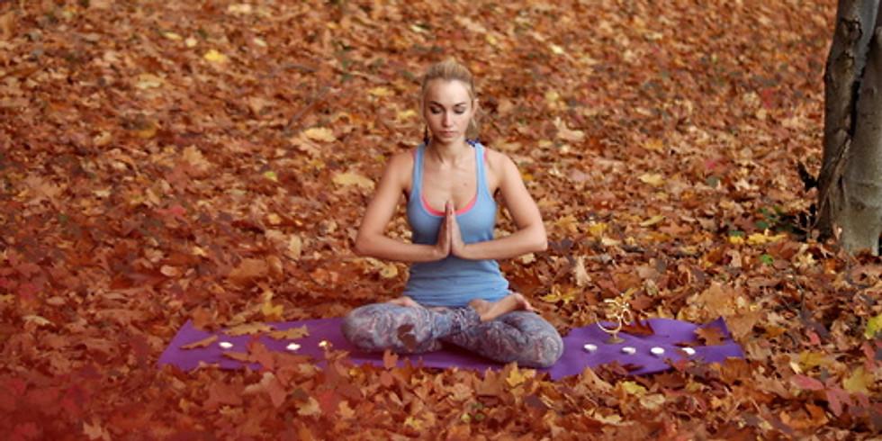 CELEBRATING AUTUMN EQUINOX   Yoga Day Retreat