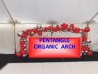 ORGANIC LARGE ARCH.jpg